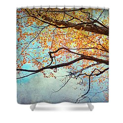 Fallen For Fall Shower Curtain by Kathi Mirto