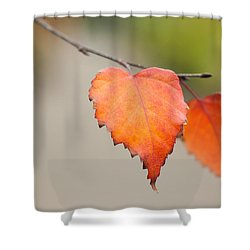 Falling For Fall Shower Curtain