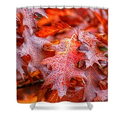 Falling For You Shower Curtain by Lynn Hopwood