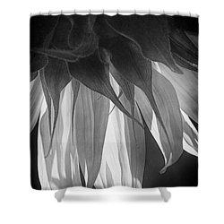 Falling Monochrome  Shower Curtain