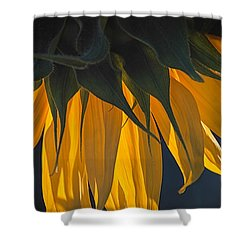 Falling Yellow  Shower Curtain