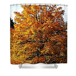 Fallish Yellowish Shower Curtain by Jana E Provenzano