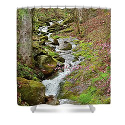 Falls Accented In Pink Shower Curtain