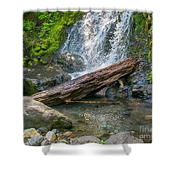 Falls Creek 0742 Shower Curtain