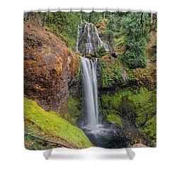 Falls Creek Falls Shower Curtain by David Gn