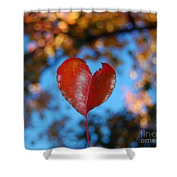 Shower Curtain featuring the photograph Fall's Heart by Debra Thompson