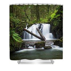 Falls On Canyon Creek Shower Curtain
