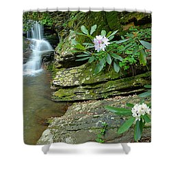Falls On Catawba Creek Shower Curtain