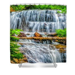 Shower Curtain featuring the photograph Falls On Sable Creek by Nick Zelinsky