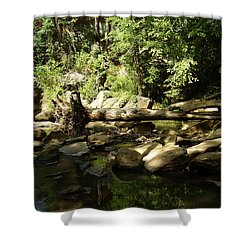Falls Park Shower Curtain by Flavia Westerwelle