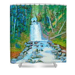 Falls Shower Curtain by Rae  Smith