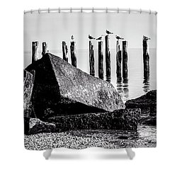 Falmouth Highlands Shower Curtain