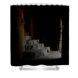 False Escape Shower Curtain