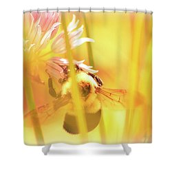 Fame Is A Bee Shower Curtain by Bob Orsillo