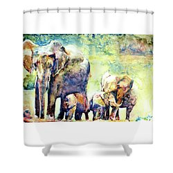 Familial Bonds Shower Curtain