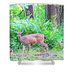 Family In The Wild Shower Curtain
