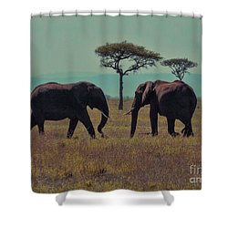 Shower Curtain featuring the photograph Family by Karen Lewis