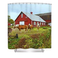 Family On The Farm Shower Curtain
