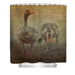 Family Outing Shower Curtain by Wallaroo Images