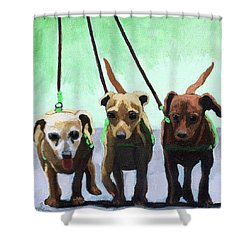 Family Ties - Chihuahuas Dog Painting Shower Curtain