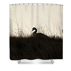 Family Time Shower Curtain by Marilyn Hunt