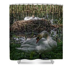 Shower Curtain featuring the photograph Family Time by Odd Jeppesen