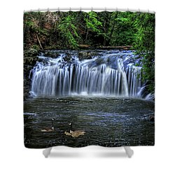 Shower Curtain featuring the digital art Family Time by Sharon Batdorf