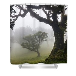 Fanal Shower Curtain by Evgeni Dinev