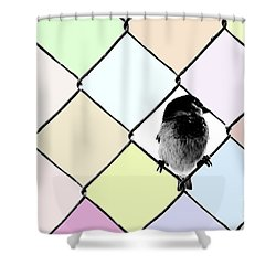 Fancy Colors Shower Curtain