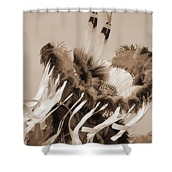Shower Curtain featuring the photograph Fancy Dancer In Sepia by Heidi Hermes