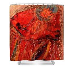Fancy Shawl Dancer Shower Curtain