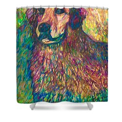 Fannie Shower Curtain