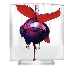 Fantastic Fuchsia Shower Curtain