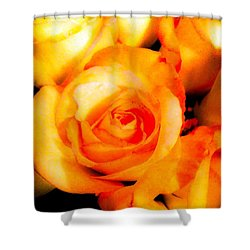 Fantastic Roses Shower Curtain