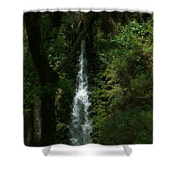 Fantasy Falls  Shower Curtain