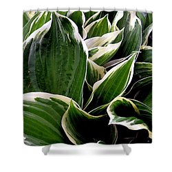 Fantasy In White And Green Shower Curtain