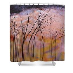 fantasy landscape trees - Fleeting Forest Shower Curtain