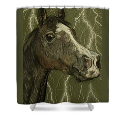 Fantasy Xanthus Shower Curtain by Melita Safran