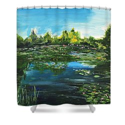 Shower Curtain featuring the painting I Wish The Best For You by Belinda Low