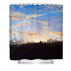 Far Horizons Shower Curtain