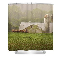 Farm - Farmer - Amish Farming Shower Curtain by Mike Savad