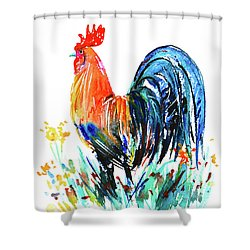 Shower Curtain featuring the painting Farm Rooster by Zaira Dzhaubaeva