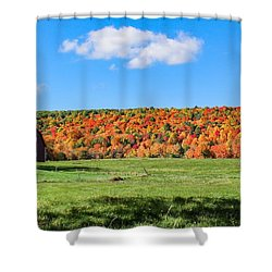 Farm View From Russellville Road Shower Curtain