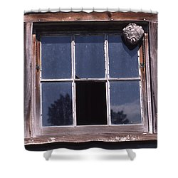 Farm Window With Paper Wasp Nest Shower Curtain