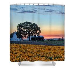 Farmhouse Among The Wallflowers Shower Curtain