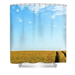 Farmland To The Horizon 1 Shower Curtain by Heiko Koehrer-Wagner