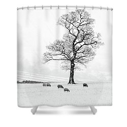 Farndale Winter Shower Curtain