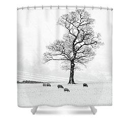 Farndale Winter Shower Curtain by Janet Burdon