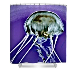 Shower Curtain featuring the photograph Farpoint by Bob Wall