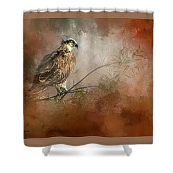 Farsighted Wisdom Shower Curtain